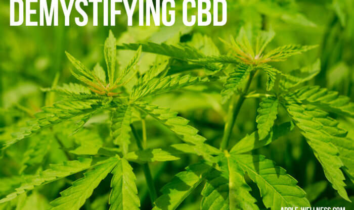is-cbd-oil-different-from-weed-nutrition-store-madison-wi
