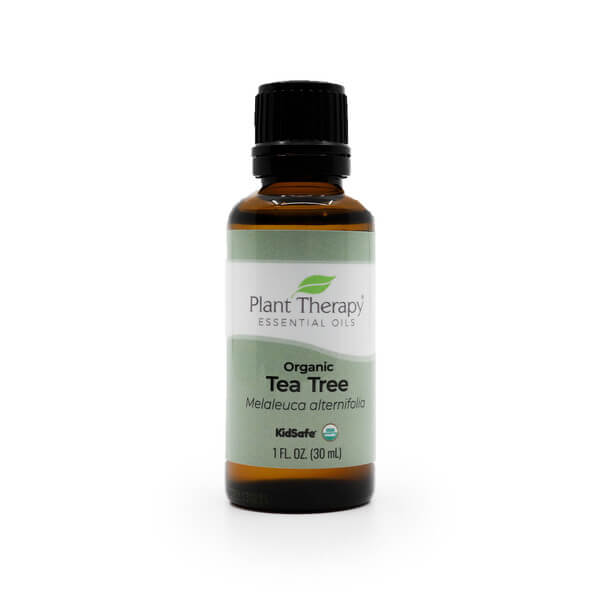 Plant Therapy Organic Tea Tree The Healthy Place Madison WI