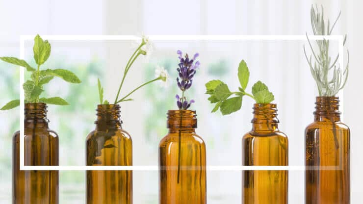 rotating essential oils how to rotate essential oils aromatherapy store madison wi the healthy place