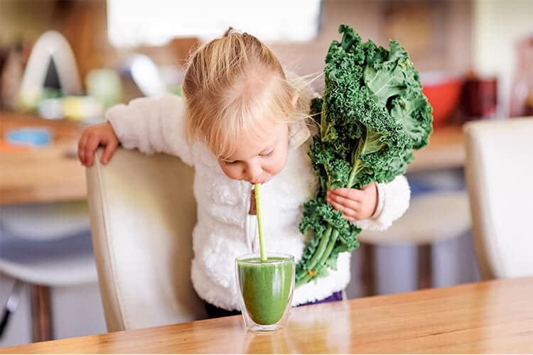 healthy diet for kids healthy weight healthy eating for kids health food store madison wi the healthy place
